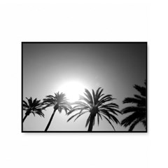 북유럽 보타니컬 식물 야자수 팜트리 흑백사진 액자