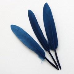 블루그린깃털(S)_10p