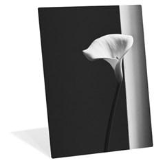 [메탈 포토패널] 8x10