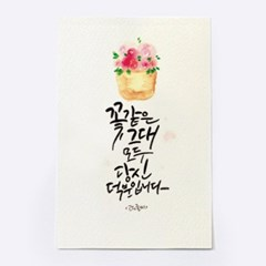[앳원스]꽃같은 그대 모두 당신덕분입니다-캘리그라피 청춘엽서
