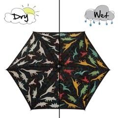 Holly & Beau 컬러체인징 우산 - 공룡
