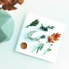 겨울은 담은 생화 카드