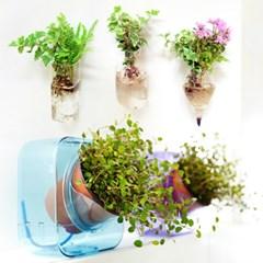반려식물 쉽게 키우기/유리 화병/에코포트