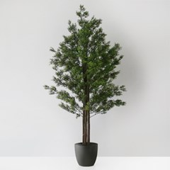 Green 타임 트리(120cm)