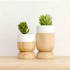 TYPE A6 l Mini Wood Pot