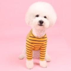 스트라이프티 (mustard) stripe T