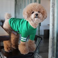 (T) cheer up (치얼업) T ,Green