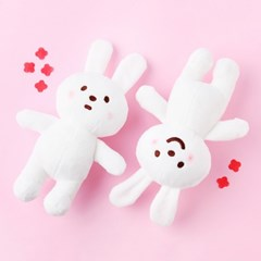 Naughty rabbit plush set