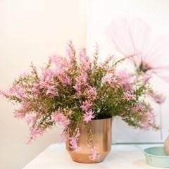 인테리어 조화 핑크 로즈마리