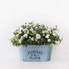 FLOWER & PLANTS 타원 틴 바스켓