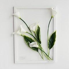 보타니컬 투명액자-카라 A3 (식물액자)
