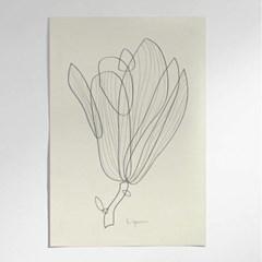 SPRING, SKETCH NO.1(목련꽃)포스터