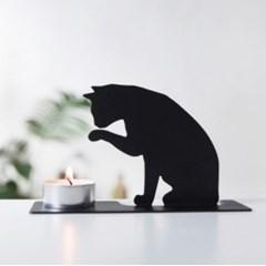 CAT [고양이]
