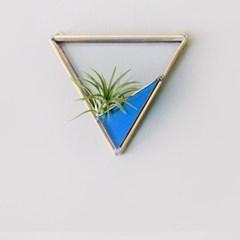 ocean 테라리움 - 삼각형