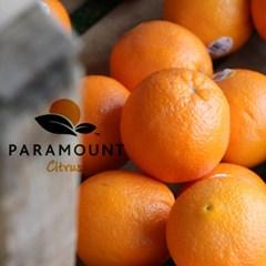 고당도 네이블 오렌지 중소과14kg(70~90과)_(617643)