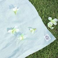 Sweet blanket - Mint