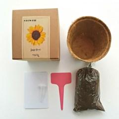 꽃 키우기 grow kit (해바라기)