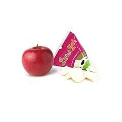 [애견간식] 동결 건조 사과칩
