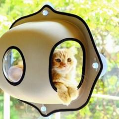 고양이하우스 특가!