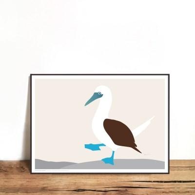 인테리어액자 blue footed booby bird