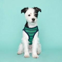 [플로트] 시그니쳐 강아지 민소매 티셔츠 - 샤이닝 그린