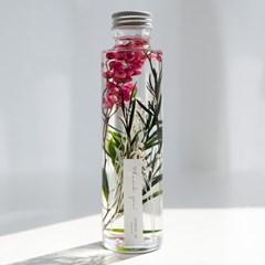 하바리움(herbarium) - 라운드보틀 - 핑크페퍼베리