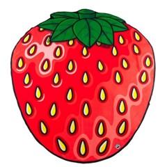 딸기 비치 블랭킷 & 타월 (BMBT-SMB)