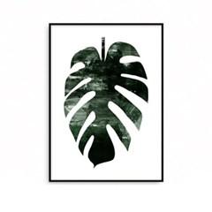 패브릭포스터 식물액자 그림 몬스테라