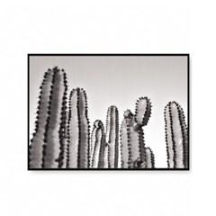 패브릭포스터 식물그림 액자 선인장
