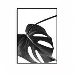 패브릭포스터 식물액자 몬스테라
