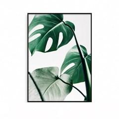 패브릭포스터 거실그림 식물액자 몬스테라