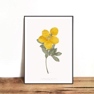 인테리어액자 Dry wild flower 01