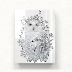 owl 아크릴 일러스트 그림액자by설희(216733)