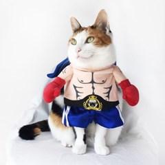 Miyopet 권투선수 고양이옷 강아지옷 코스튬 할로윈