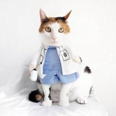 Miyopet 의사 옷 고양이옷 강아지옷 코스튬 할로윈