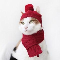Miyopet 모자 목도리 고양이옷 강아지옷 코스튬 할로윈