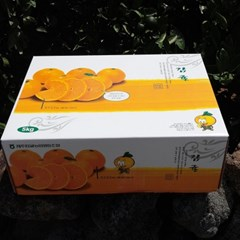효돈 하우스감귤 5kg(50~70과/M사이즈)_선물용 로얄과/산지직송