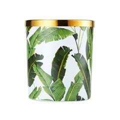 CN 트로피칼큰잎 캐니스터 9X10_(543043)