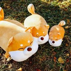 [모찌타운] 시바 강아지 애착인형 말랑모찌인형 S