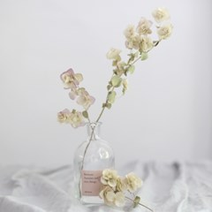 Autumn&Winter 클라우드 (preserved flower)