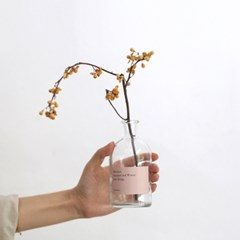 Autumn&Winter 까치밥나무 (dry flower)