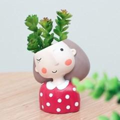 새침소녀 다육식물 화분