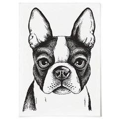 패브릭 포스터 F101 동물 개 그림 보스턴 테리어