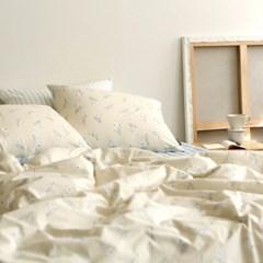 Bedding set (cotton) - 40 Paperwhite SS(슈퍼싱글)