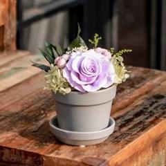 프리저브드플라워_Small Pot Flower_무광화기