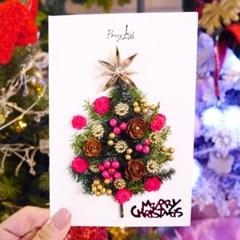 크리스마스카드 드라이플라워카드 NO.27 크리스마스의 별