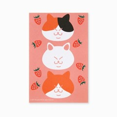 블링블링 식빵뚱냥 반짝이는 펄 엽서 - 딸기