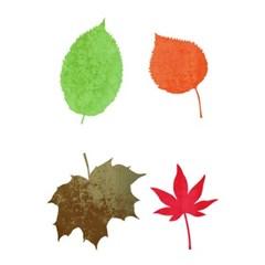 블랭코 스텐실도안700 나뭇잎 모음(1)