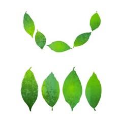 블랭코 스텐실도안703 나뭇잎 패턴