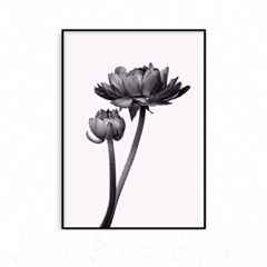 패브릭포스터 식물 꽃그림 액자